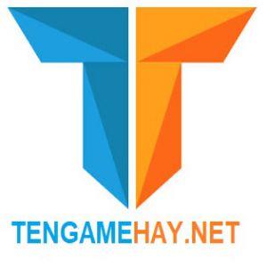 Tengamehay logo